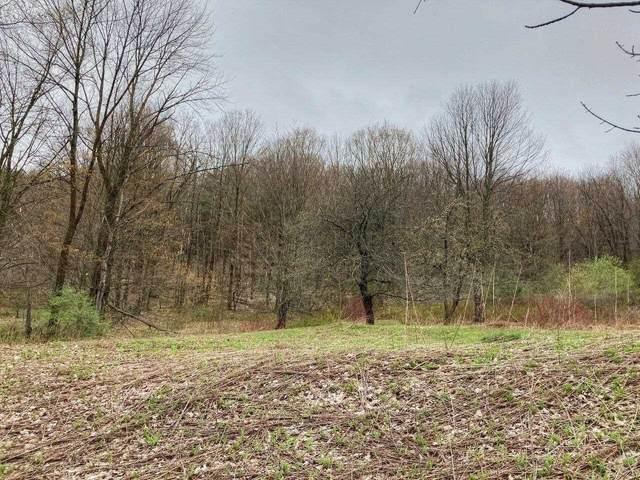 00 Pond Road, Hinesburg, VT 05461 (MLS #4858320) :: The Gardner Group