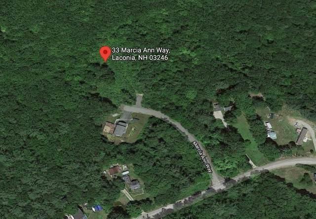 33 Marcia Ann Way, Laconia, NH 03246 (MLS #4859106) :: Jim Knowlton Home Team
