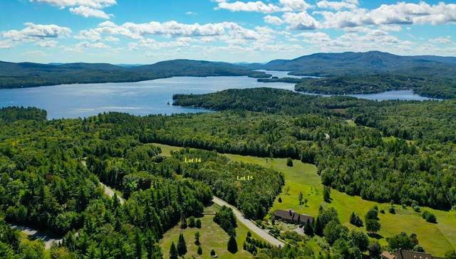 0 Browns Hill Road, Sunapee, NH 03782 (MLS #4859287) :: Signature Properties of Vermont