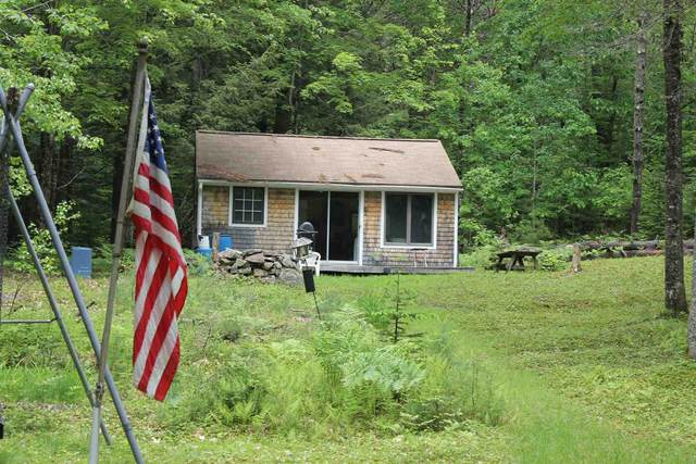 1147 Province Lake Road, Effingham, NH 03882 (MLS #4860128) :: Parrott Realty Group
