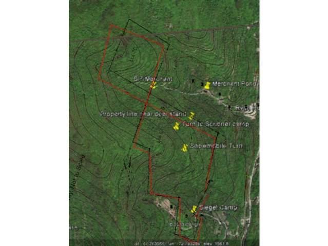 00 Connolly Road 5&6, Duxbury, VT 05676 (MLS #4860610) :: The Hammond Team