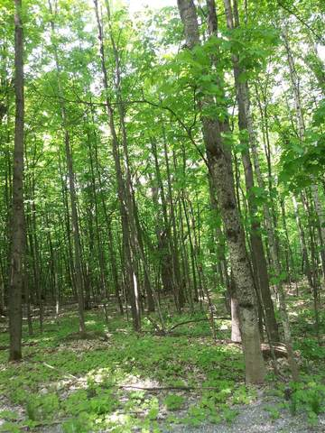 000 Lincoln Hill Road Parcel A, Hinesburg, VT 05461 (MLS #4862490) :: Signature Properties of Vermont