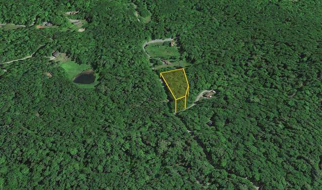 0 Overbrook Road #17, Franconia, NH 03580 (MLS #4862504) :: Signature Properties of Vermont