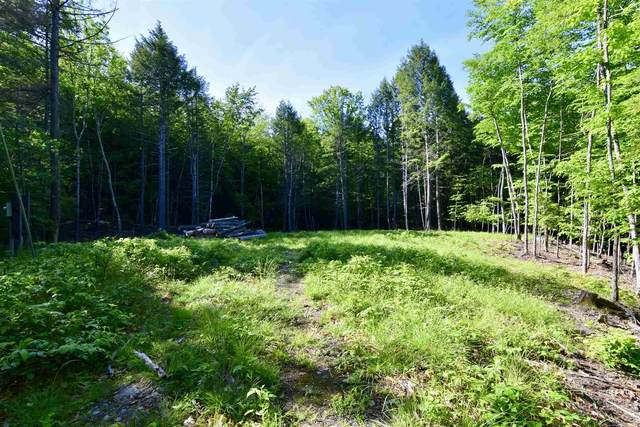 16-133 Hawk Pine Road, Norwich, VT 05055 (MLS #4864191) :: Hergenrother Realty Group Vermont