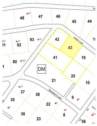 Antler Loop 43 42 41 20, Dover, VT 05356 (MLS #4867058) :: Keller Williams Realty Metropolitan