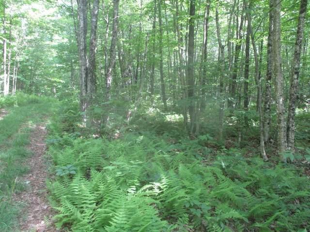 Lot E Marjorie Drive Lot E, Eden, VT 05652 (MLS #4867077) :: Signature Properties of Vermont
