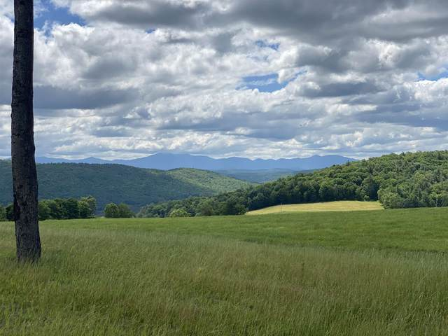 Hale Road, Waterford, VT 05819 (MLS #4867134) :: Signature Properties of Vermont