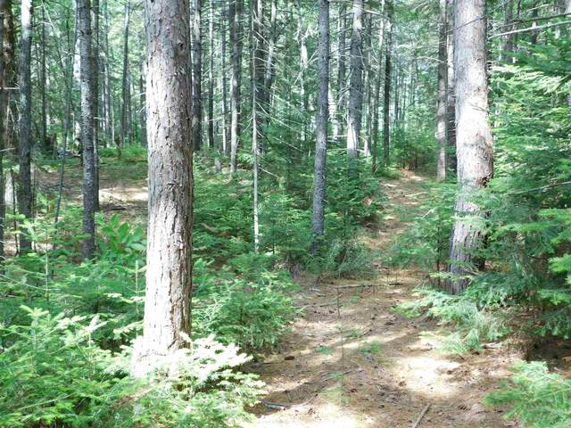 00 Amory Leland Drive #19, Thornton, NH 03285 (MLS #4867691) :: Signature Properties of Vermont