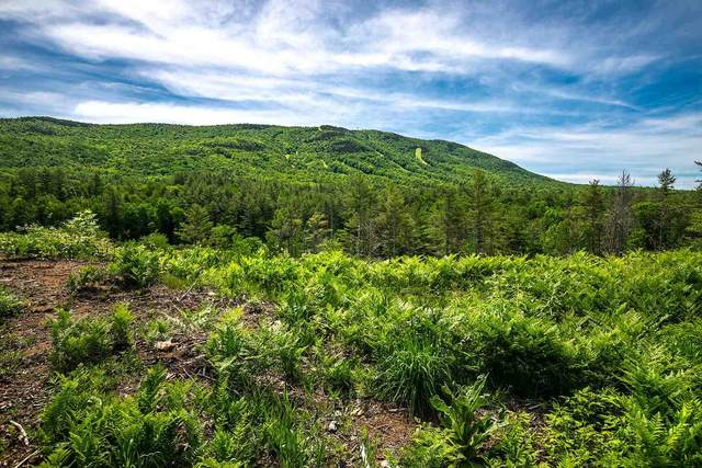 4935 Route 11 East L1 Lot 1, Londonderry, VT 05148 (MLS #4867746) :: The Gardner Group