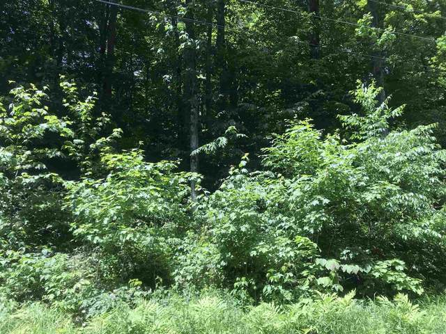 18 Upper Howes Way A 18 & A 19, Wilmington, VT 05363 (MLS #4867754) :: The Gardner Group