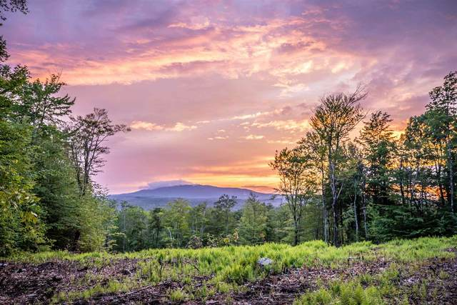 00 Cranberry Hill Road, Peterborough, NH 03458 (MLS #4872810) :: Signature Properties of Vermont