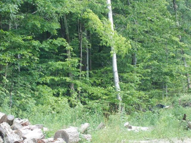 0 Moose Hollow Road #43, Winhall, VT 05340 (MLS #4873291) :: The Gardner Group
