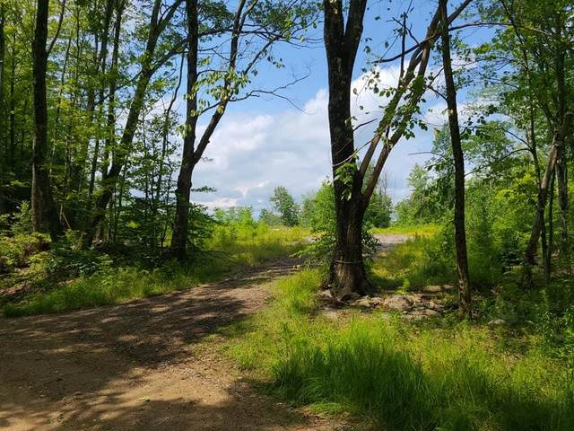 0 Youngs Hill Road, Loudon, NH 03307 (MLS #4873618) :: Signature Properties of Vermont