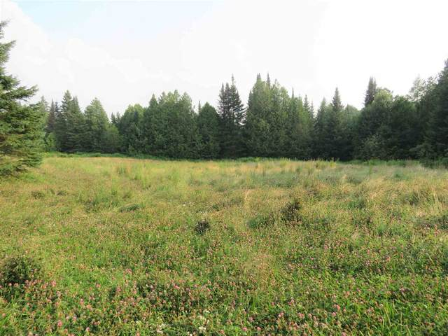 440 Page Hill Road #3, Holland, VT 05830 (MLS #4874767) :: Lajoie Home Team at Keller Williams Gateway Realty