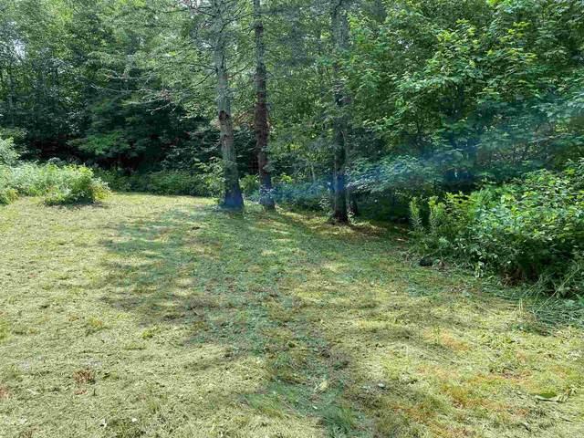 700 Young Farm Road Extension, Peacham, VT 05862 (MLS #4875076) :: Parrott Realty Group