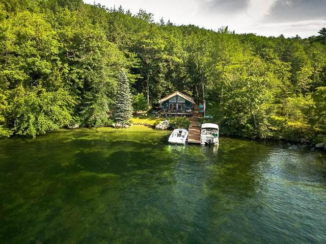 42 Little Bear Island, Tuftonboro, NH 03816 (MLS #4875083) :: Parrott Realty Group