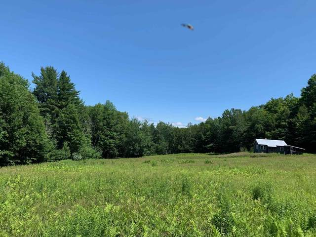 264 Grasshopper Lane, Reading, VT 05153 (MLS #4875186) :: Signature Properties of Vermont