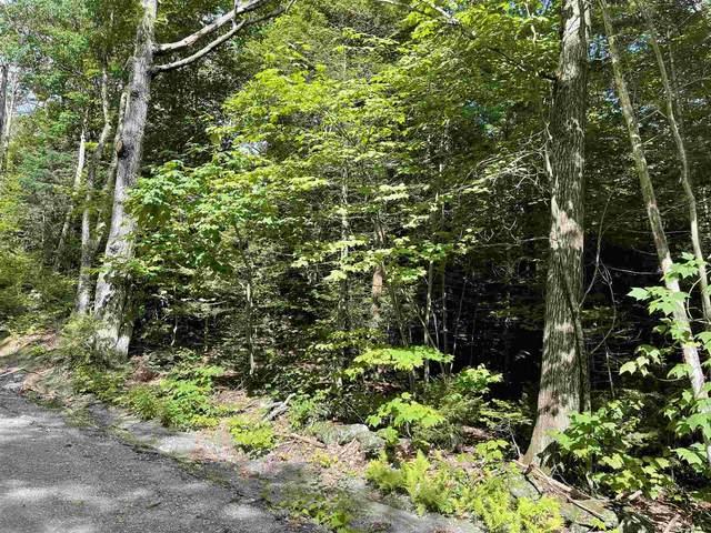 70 Villager Loop, Dover, VT 05356 (MLS #4875210) :: Signature Properties of Vermont