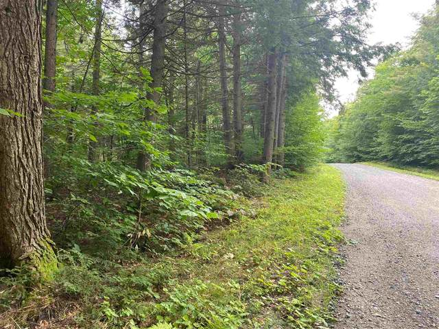 21 Willis Cemetery Road 21 & 21 A, Stratton, VT 05360 (MLS #4875556) :: The Gardner Group