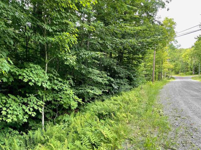7 Wolf Lane, Dover, VT 05356 (MLS #4879225) :: Keller Williams Coastal Realty
