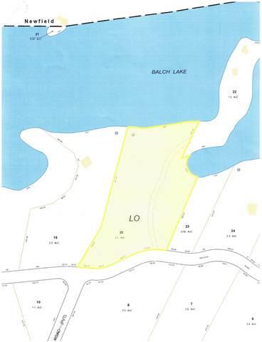 00 Raccoon Road, Acton, ME 04001 (MLS #4886743) :: Keller Williams Coastal Realty