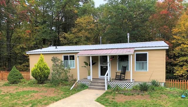 10 Tamarack Lane, Raymond, NH 03077 (MLS #4887932) :: Hergenrother Realty Group Vermont