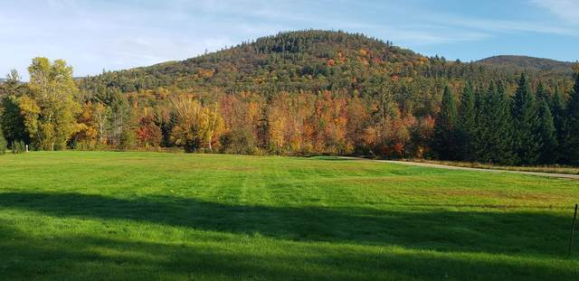 E Cobb Farm Road E, Bartlett, NH 03812 (MLS #4887934) :: Hergenrother Realty Group Vermont