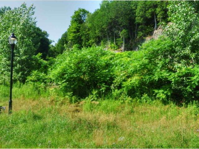 Lot 40 Marble Island Road, Colchester, VT 05446 (MLS #4373438) :: Hergenrother Realty Group Vermont