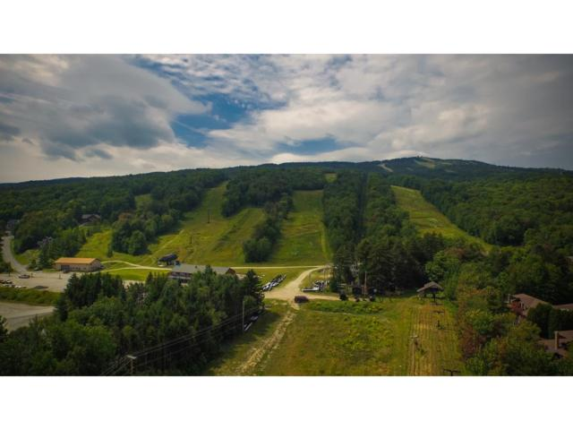 Lot 4 Encore Place, Dover, VT 05356 (MLS #4488134) :: Keller Williams Coastal Realty