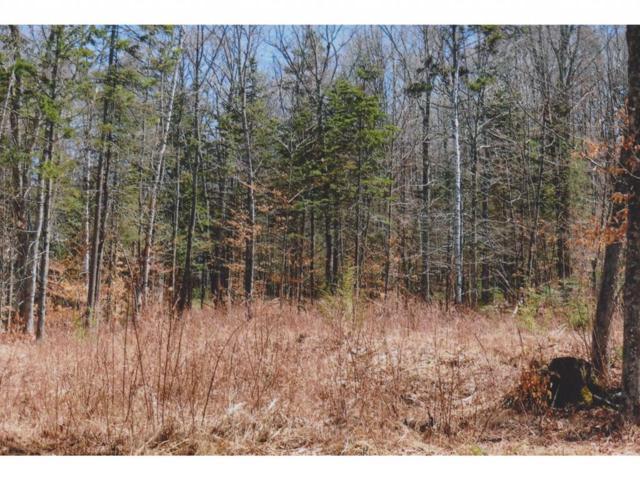 3 Gardiner Drive, Londonderry, VT 05148 (MLS #4508657) :: Signature Properties of Vermont