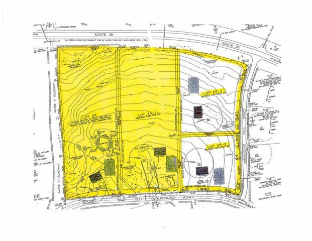Lot 9 & 9-1 Old Wolfeboro Road Road, Alton, NH 03809 (MLS #4607160) :: Keller Williams Coastal Realty