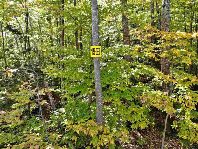15 H Buzzell Ridge Road Tax Map 12 Lot , Sandwich, NH 03227 (MLS #4614290) :: The Hammond Team