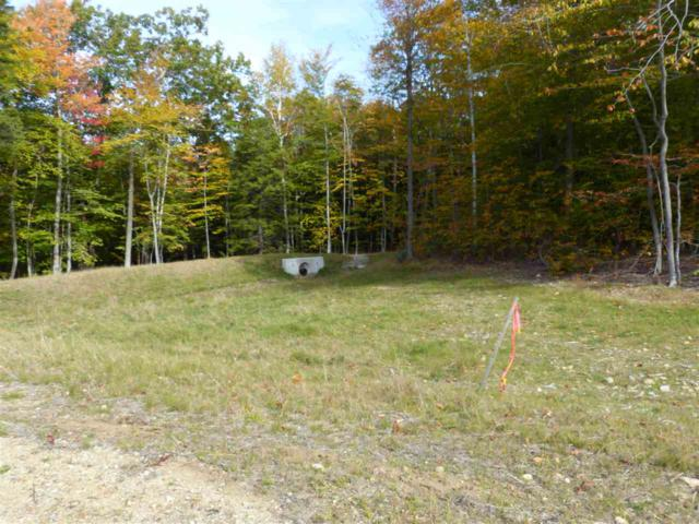 Lot 11 Buzzell Ridge Road #12 Lot 15.L, Sandwich, NH 03227 (MLS #4614297) :: The Hammond Team