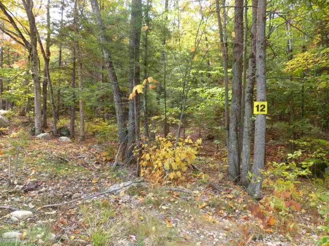 Lot 12 Buzzell Ridge Road #12 Lot 15.M, Sandwich, NH 03227 (MLS #4614326) :: The Hammond Team