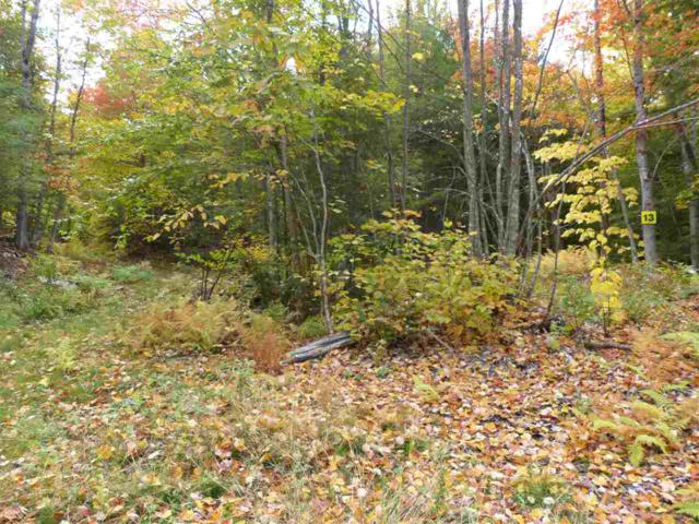 Lot 13 Buzzell Ridge Road #12 Lot 15.N, Sandwich, NH 03227 (MLS #4614327) :: The Hammond Team