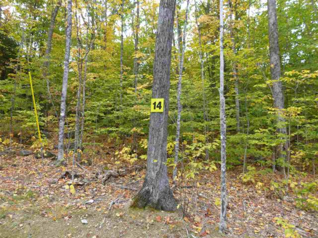 Lot 14 Buzzell Ridge Road #12 Lot 15.O, Sandwich, NH 03227 (MLS #4614328) :: The Hammond Team