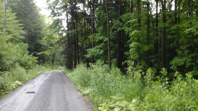Wood Road #2, Worcester, VT 05602 (MLS #4647788) :: The Gardner Group