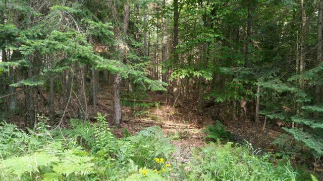 14-257 Garfield Dr, Washington, NH 03280 (MLS #4655110) :: Keller Williams Coastal Realty