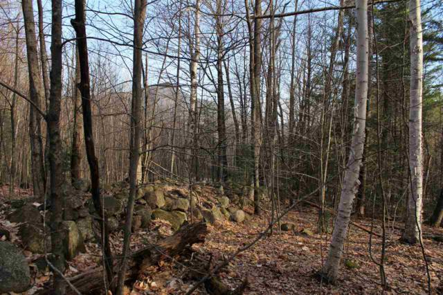 0 Moat View Drive #14, Albany, NH 03818 (MLS #4668832) :: Hergenrother Realty Group Vermont