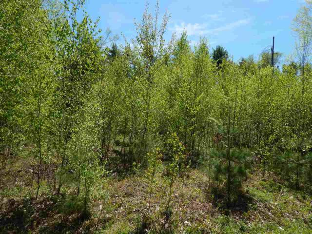 Lot 14 Maple View Drive, Bradford, NH 03221 (MLS #4671570) :: Keller Williams Coastal Realty