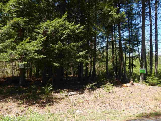 Lot 8 Maple View Drive, Bradford, NH 03221 (MLS #4671578) :: Keller Williams Coastal Realty