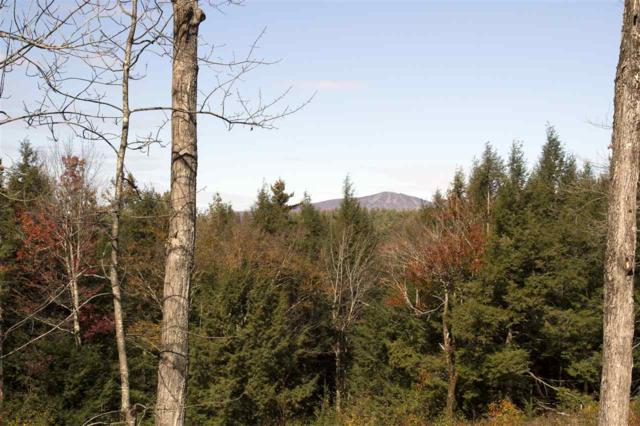 Lot 10a/b Garden Loop Rd 10A, 10B, 11, Winhall, VT 05340 (MLS #4673927) :: Keller Williams Coastal Realty