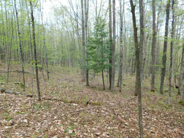 410 Leon's Lane Lot #2, Sharon, VT 05065 (MLS #4676233) :: The Gardner Group