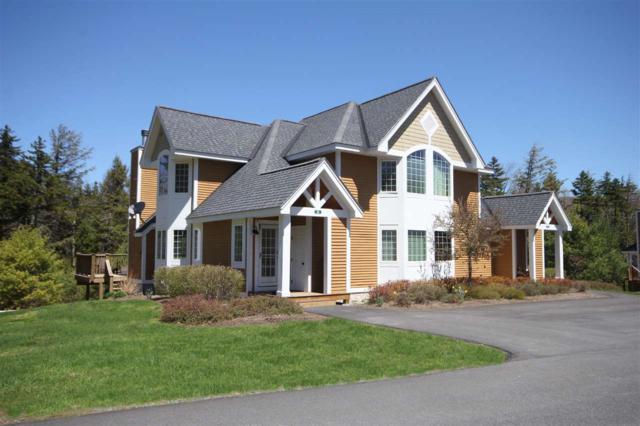 3a Foliage Lane, Dover, VT 05356 (MLS #4689092) :: Keller Williams Coastal Realty
