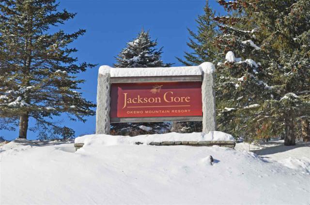 342/344 Qtr. I Jackson Gore 342/344, Ludlow, VT 05149 (MLS #4698028) :: The Gardner Group