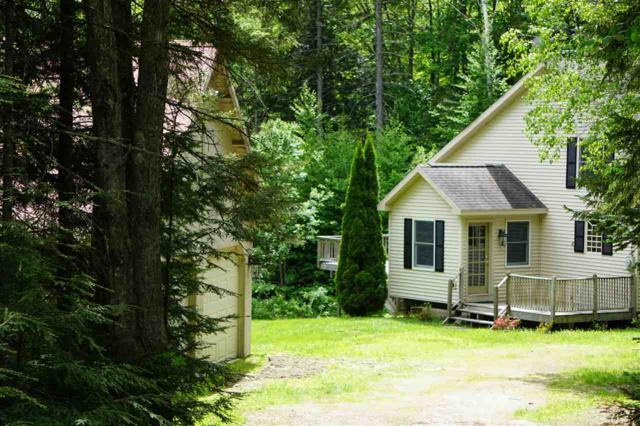 143 Kerri Anne Lane, Stratton, VT 05355 (MLS #4700530) :: Hergenrother Realty Group Vermont
