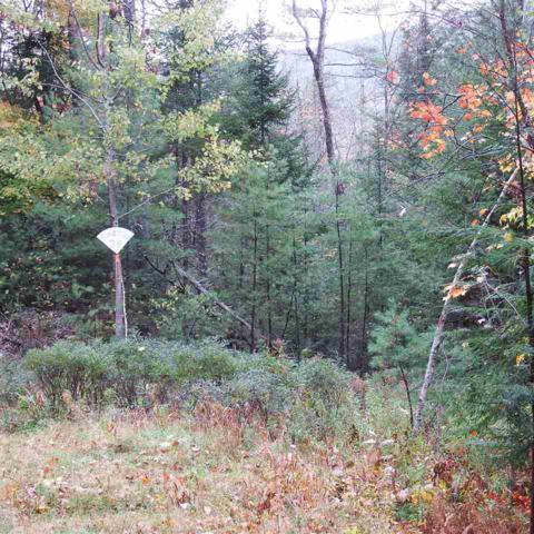 Cortina Street 121/012, Moultonborough, NH 03254 (MLS #4720128) :: Signature Properties of Vermont