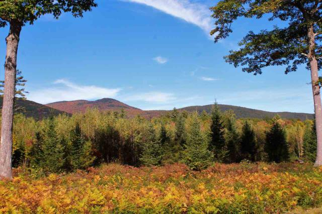 40 Mountain Shadows Drive Lot 40, Tuftonboro, NH 03816 (MLS #4722270) :: Hergenrother Realty Group Vermont