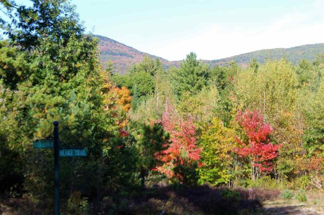 32 Blake Trail Lot 32, Tuftonboro, NH 03816 (MLS #4722273) :: Hergenrother Realty Group Vermont