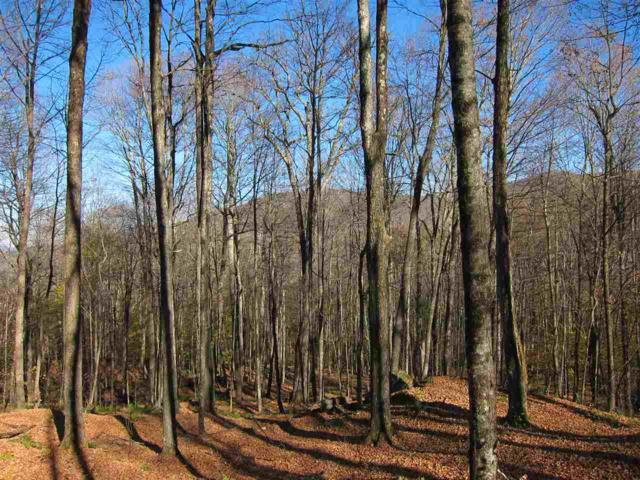 TH #11 Off Of Mecawee Road, Reading, VT 05062 (MLS #4725094) :: The Gardner Group
